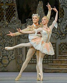 <<Iana Salenko (Prima Ballerina at Staatsballett Berlin and Principal guest at The Royal Ballet, London) and Steven McRae (Principal Dancer of The Royal Ballet, London)>>
