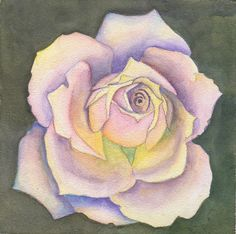 Print of New Dawn Rose 5 x 5 Watercolor Painting by dancingjill