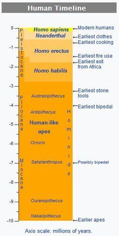 Human timeline  http://whatisthewik.com/prehistoric/