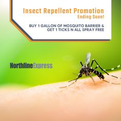 Mosquito Barrier, Mosquito Larvae, Mosquito Control, My Sisters Place, Garlic Extract, Under Decks, Dishwasher Detergent, Mosquitoes, Insect Repellent