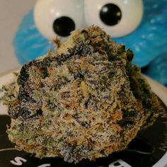 Girl Scout Cookies -Cookie Monster- | Medical Marijuana Quality Matters…
