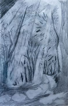 In the Woods, graphite pencil, A4.