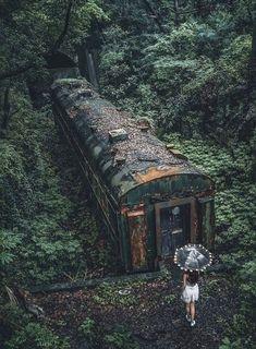 Abandoned Train, Abandoned Buildings, Abandoned Places, Abandoned Castles, Abandoned Mansions, Haunted Places, Peaceful Places, Beautiful Places, Beautiful Ruins