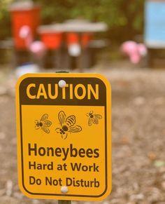 Shhhh!🐝😉• BeeSmartDesigns.com • • • #beesmart #bee #bees #beekeeper #beekeeping #beekeep #apiary #apiarist #caution #honeybees #honeybee #honey #hive #hives #hivestand #beehive #beehives
