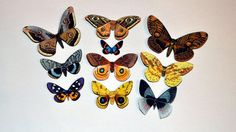 Butterfly Moth Magnets Set of 10 Insects Refrigerator Magnets Handmade Home Decor by dougwalpusartstudio. Explore more products on http://dougwalpusartstudio.etsy.com