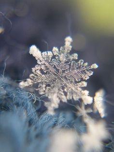 snowflake aesthetic tumblr - Google Search