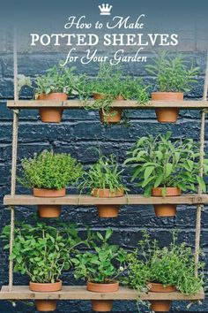 herb garden These hanging potted shelves from the book, Big Ideas for Small Spaces, offer a creative way to add vertical, green space to your little garden. Grow a mini herb garden or add trailing, flowering annuals for a burst of colour. Garden Shelves, Plant Shelves, Hanging Shelves, Rope Shelves, Shelf, Hanging Herbs, Hanging Flower Pots, Hanging Plant, Diy Hanging