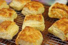Best Fluffy, Flakey, Buttery Biscuits Ever from the Orgasmic Chef!  These are the perfect biscuit for biscuits and gravy, sausage Sammy's, apple butter, or even just butter melted between the cut halves!  Yes! Yes! Yes!
