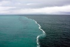 Where two oceans meet… but do not mix!   These two bodies of water were merging in the middle of The Gulf of Alaska and there was a foam developing only at their junction. It is a result of the melting glaciers being composed of fresh water and the ocean has a higher percentage of salt causing the two bodies of water to have different densities and therefore makes it more difficult to mix.