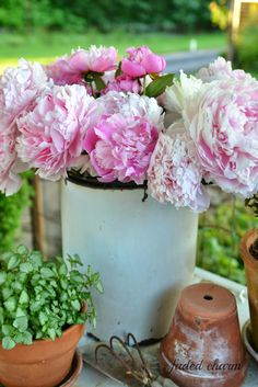 Faded Charm: ~Beautiful Blooms~ I can never get enough of peonies and was lucky to have an abundance of blooms this year ...