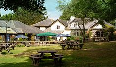 Our favorite country pub minutes from our (old) home in Bournemouth. Afternoon lunch, for sure!