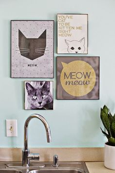 Michelle - Blog #Cats #Mania Fonte : http://www.casasugar.com/Cat-Decor-35798286