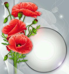 View album on Yandex. Beautiful Flowers Wallpapers, Pretty Wallpapers, Fall Wallpaper, Flower Wallpaper, Month Flowers, Text Frame, Frame Background, Paper Background, Borders And Frames