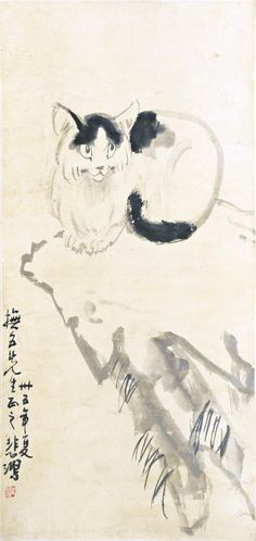 XU BEIHONG (1895-1953), CAT, INK AND COLOUR ON PAPER, SIGNED WITH SEAL, MOUNTED AS A SCROLL