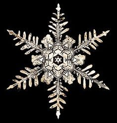 real snowflake photography - Google Search