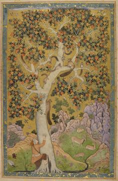 Squirrels in a plane tree    This inspired scene captures the movements of the animals as well as the huntsman attempting to gain hold of the tree.    Attributed to Abu'l Hasan, 1605-08  Johnson Album 1,30  © The British Library Board    mughal