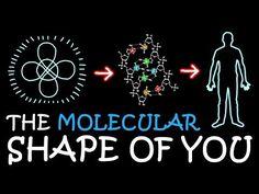 (16) The Molecular Shape of You (Ed Sheeran Parody) | A Capella Science - YouTube