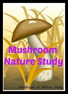 Handbook of Nature Study: Outdoor Hour Challenge - Autumn Mushroom Study Nature Activities, Science Activities, Science Ideas, Montessori, Science Crafts, Science Projects, Outdoor Classroom, Nature Journal, Nature Study