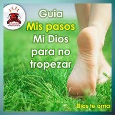 Guia mis pasos ... Mi Dios ... para no tropezar ..!!!