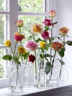 Garden roses in vintage bottles... lovely.