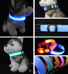 Cheap dog accessories, Buy Quality night safety directly from China pet supplies Suppliers: Nylon LED Dog Collar Light Night Safety LED Flashing Glow Pet Supplies Pet Cat Collars Dog Accessories For Small Dogs Collar LED Nylons, Dog Harness, Dog Leash, Pet Dogs, Dog Cat, Led Dog Collar, Neck Collar, Dog Safety, Cat Collars