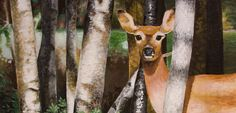 Steve Ockler. White Tailed Deer in the Poconos. Acrylic on Masonite