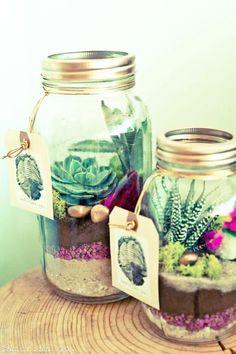 10 terrariums DIY faciles à faire