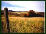 Autumn landscape. Upstate NY  http://www.ashnatkodesigns.com/