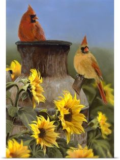 Custom Decor Original Art Garden Flag Cardinal Sunflowers MPN: Size: 12 in x 18 in Material: 300 denier polyester Fine Art Flags printed on 300 denier polyester for the best possible image Sunflower Pictures, Bird Pictures, Cardinal Pictures, Wall Art Prints, Poster Prints, Canvas Prints, State Birds, Cardinal Birds, Wild Birds
