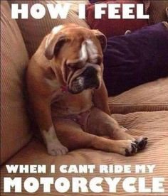 No. 17 - How I Feel When I Can't Ride