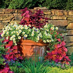 Fall Container Gardening Ideas: Bright and Bold Foliage