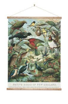 New Zealand Retro Wall Chart Large Native Birds of NZ Vintage Birds, Vintage Walls, Bird Prints, Large Prints, Canvas Art Prints, Fine Art Prints, Bird Houses For Sale, Kiwiana, Home Art