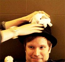 Find GIFs with the latest and newest hashtags! Search, discover and share your favorite Fall Out Boy GIFs. The best GIFs are on GIPHY.
