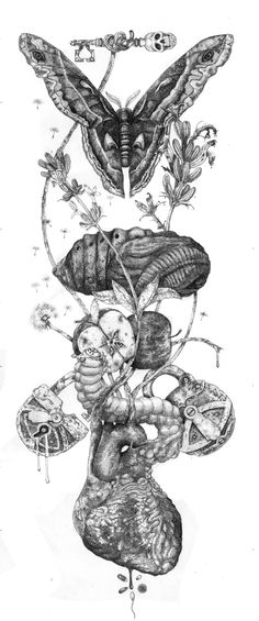 'Life cycle' by Urielstempest on Deviant Art (Shaun Beaudry)…