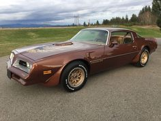 1978 Pontiac Trans Am   eBay