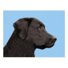 Labrador Retriever (Black) Postcard - dog puppy dogs doggy pup hound love pet best friend