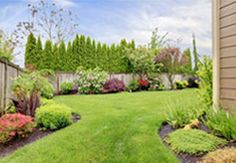 We have the  tools to provide weed spraying and control, fertilising and mulching for complete property lawn and  house maintenance.