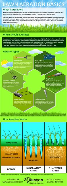 Spring between March and May is the perfect time to consider aerating your lawn. If your yard suffers from poor drainage poor subsoil or brown worn grass then it is definitely a good idea to consider renting an aerator for a day and giving your lawn fresh