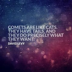 Comets are like cats.  They have tails, and they do precisely what they want. ~ David Levy
