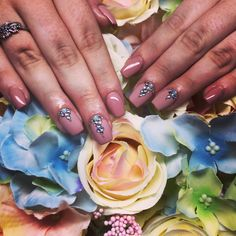 Barna matt-fényes Sapphire, Nails, Rings, Beauty, Jewelry, Finger Nails, Jewlery, Ongles, Jewerly