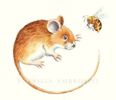 PRINT ..Mr.Mouse and the bee.... PRINT by happyapplebumblebee, $6.00