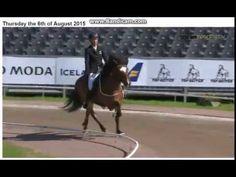 WC Icelandic Horses 2015