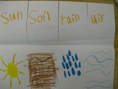Easy activity for students to create to show what plants need in order to grow.  #kindergartenscience #plants