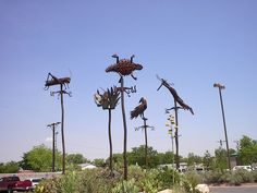 Albuquerque Aquarium and Botanical Gardens-loved all the sculpture and artwork there