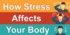 Stress is considered to be the most pernicious factor that leads to early death and poor health. The most stressed-out people are at a greatest risk of premature death. In fact, it isn't only major life stresses, such as job loss or divorce, which can kill you; but it is also how you react to …