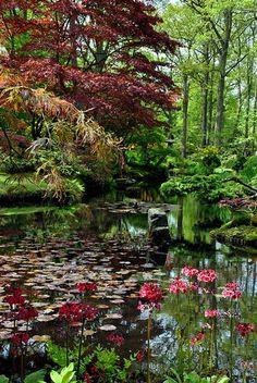Clingendael Park, Den Haag, Holland