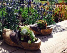 #small gardens #stockseehof