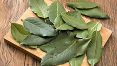 They Call It God's Blessing, Remove High Blood Pressure, Diabetes, Fat In Your Blood and Insomnia - Home Remedies Daily Natural Health Remedies, Home Remedies, Diabetes, Burning Bay Leaves, Plant Therapy, Aromatic Herbs, Herbs Indoors, High Blood Pressure, Growing Herbs