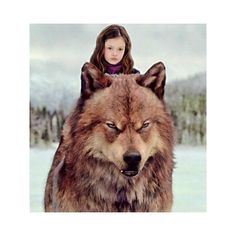 Breaking dawn part 2renesmee and jacob.jpg via Polyvore featuring twilight