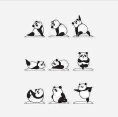 Panda Yoga Cute Sticker by Huebucket - White Background - Panda Illustration, Niedlicher Panda, Cartoon Panda, Yoga Cartoon, Yoga Kunst, Yoga Drawing, Animal Yoga, Yoga Art, How To Do Yoga